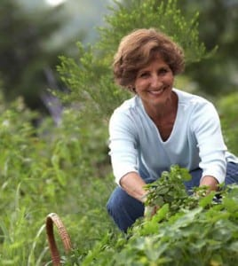 Rita Heikenfeld's Herb Garden-Herbs and Spices from the Bible